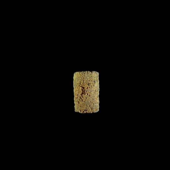Liliowiec nieoznaczalny